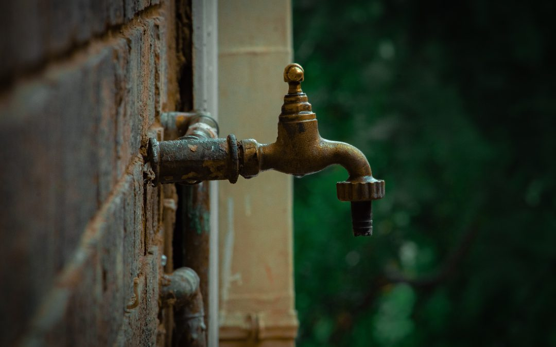 SAAE Advisory Note 2 to Government The State of water services in South African Municipalities
